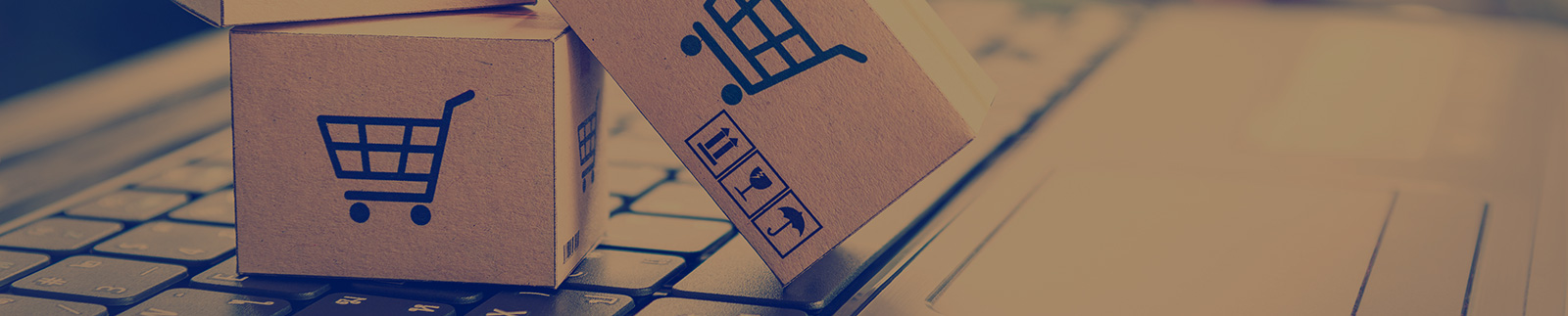 The stats behind ecommerce growth and how to setup your own online store