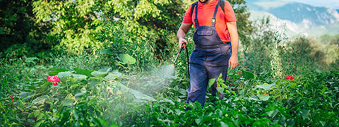 herbicide-and-pesticide-safety-for-property-owners